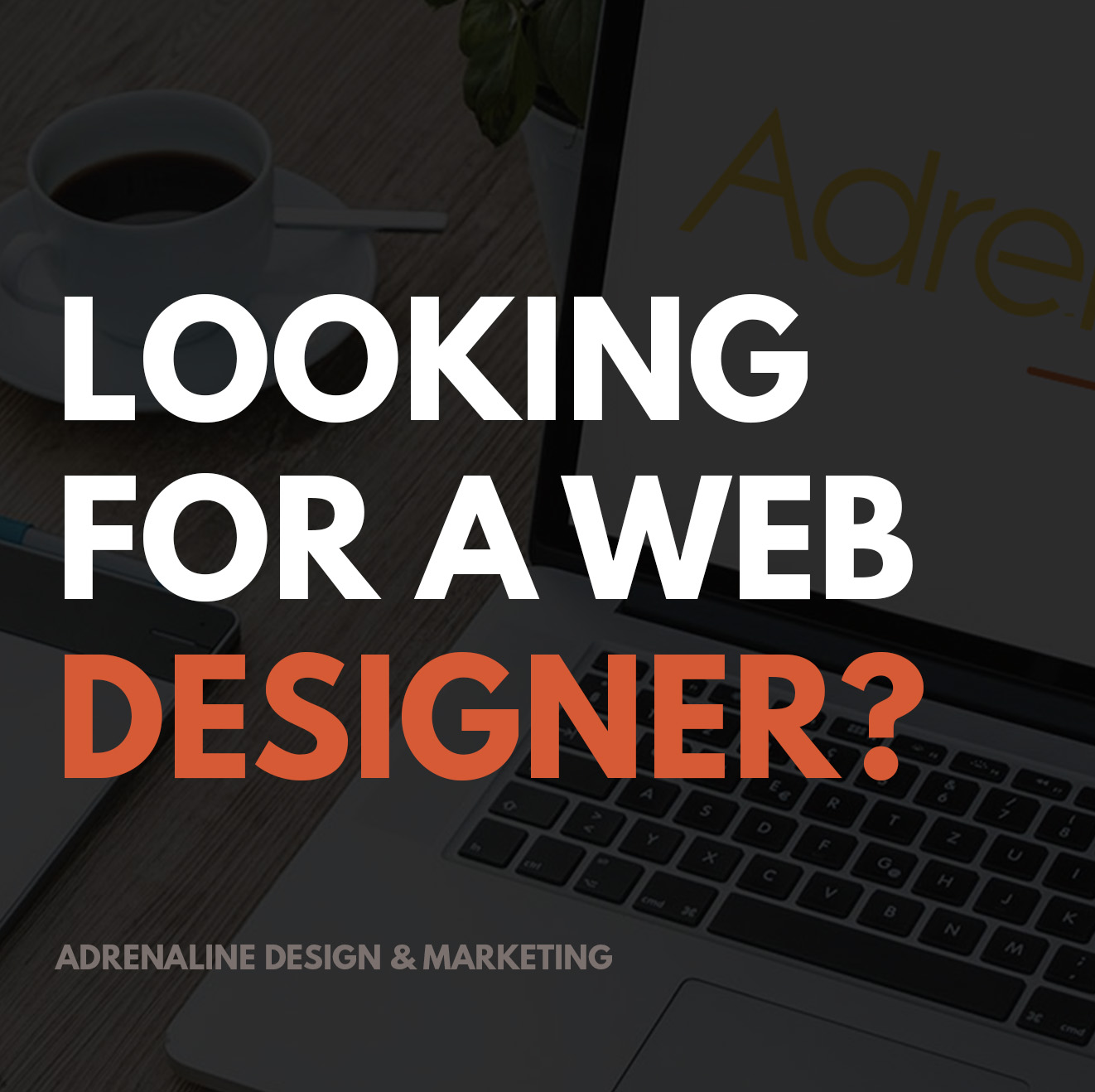 Looking for a Web Design Company?