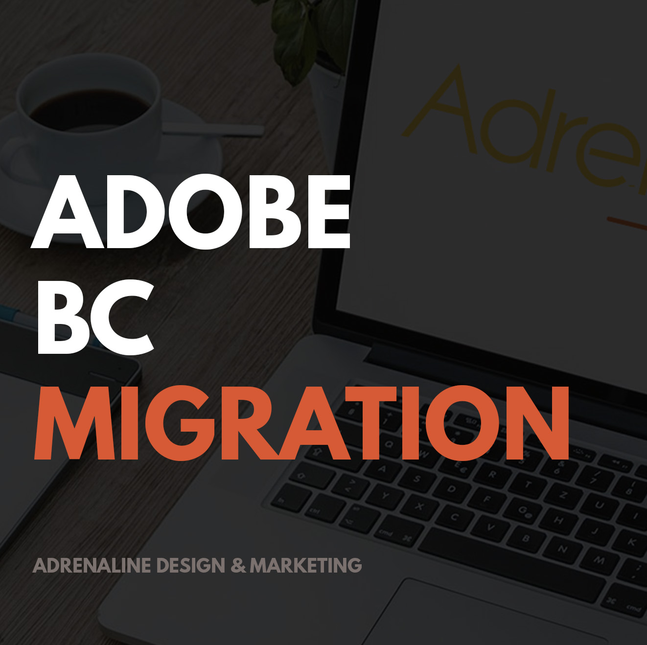 Adobe Business Catalyst Migration